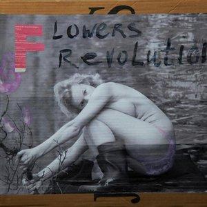 flowers-revolution_300_300_2